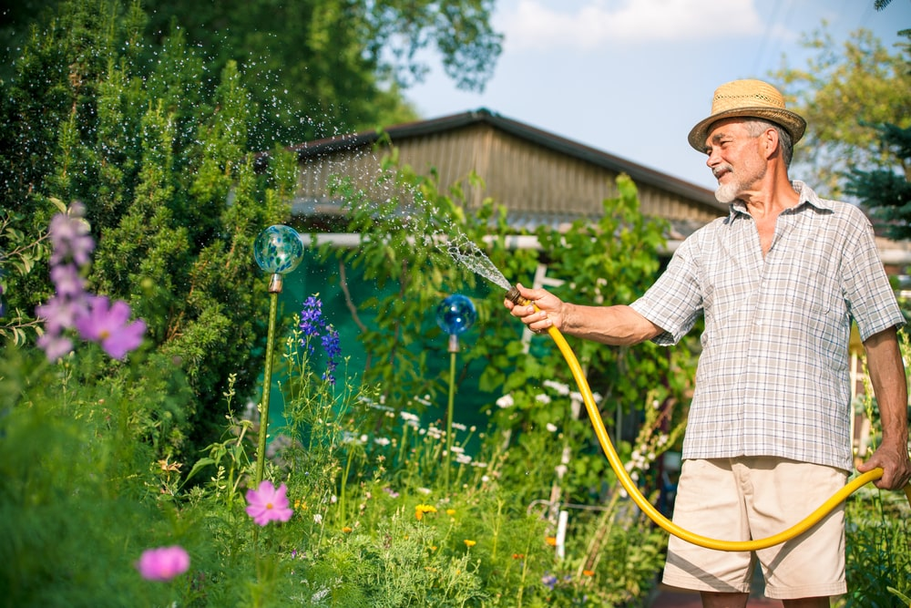Activities For Elderly People